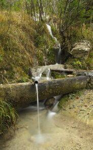Jak znaleźć wodę